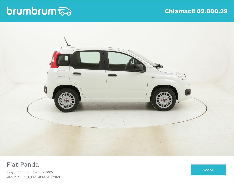 Fiat Panda noleggio a lungo termine   brumbrum
